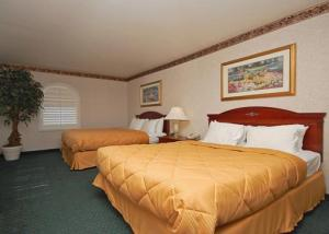 Hotel: Comfort Inn & Suites Hollywood - FOTO 5