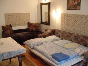 Apartment: Astori Apartments and Hostel - FOTO 5