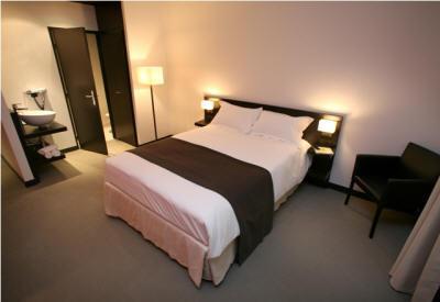 Hotel: Hotel Central Lyon Perache - FOTO 1