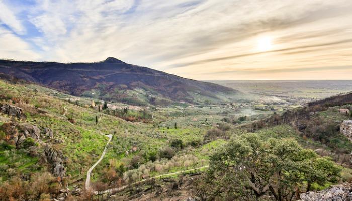 Monte Pisano