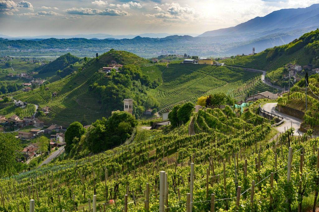 prosecco_hills