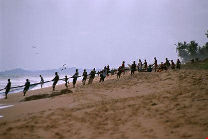 Pescatori che tirano a riva la rete
