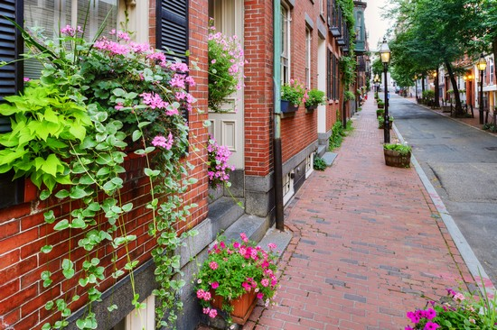 Guida BOSTON