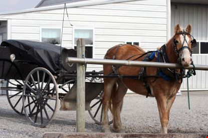 Carretto con Cavallo