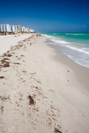 Photo miami beach vista della spiaggia in Miami Beach - Pictures and Images of Miami Beach