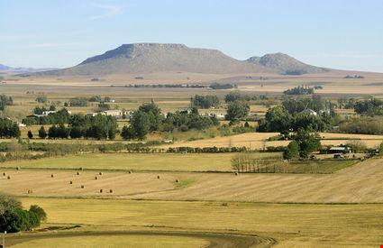 Argentine countryside