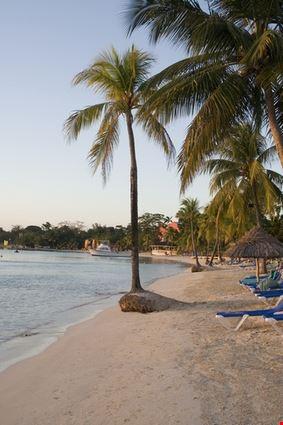 Caribbean Sandy Beach