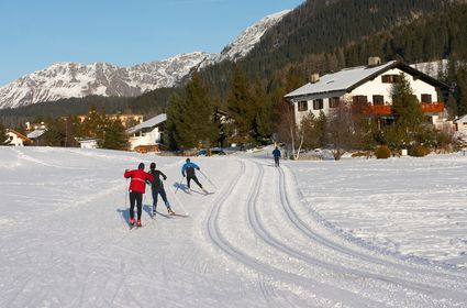 Photo Cross-country skiers on a track in Davos - Pictures and Images of Davos