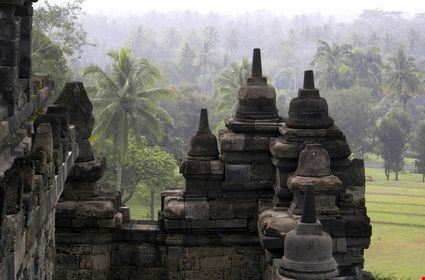 Stupas of Borobudur and palm trees