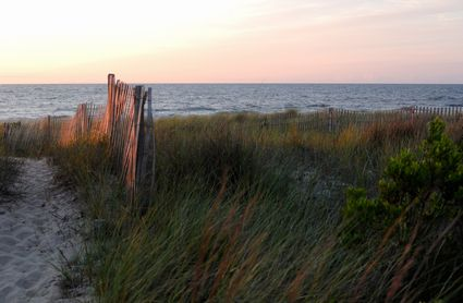Photo Over the sand dune and to the beach in Bethany Beach - Pictures and Images of Bethany Beach