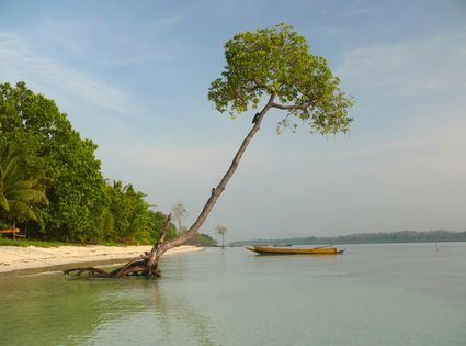 Photo Tropical beach in Havelock Islands - Pictures and Images of Havelock Islands - 425x315  - Author: Editorial Staff, photo 2 of 2