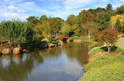 Photo Japanese garden in Toowoomba - Pictures and Images of Toowoomba - 425x280  - Author: Editorial Staff, photo 1 of 2