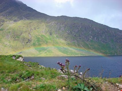 Complete Rainbow in a field