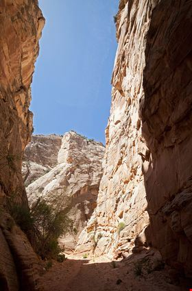 Hiking trail in canyon