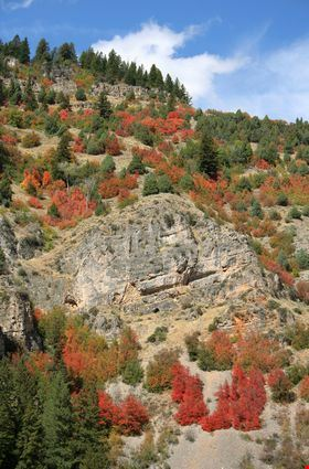 Canyon scenic byway