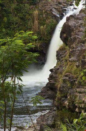 Unamed waterfall on the Wialuki river
