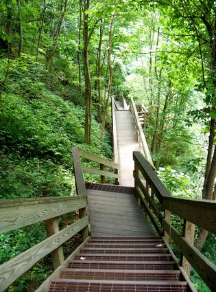 Photo Hiking in the Amicalola Falls State Park in Dawsonville - Pictures and Images of Dawsonville - 315x425  - Author: Editorial Staff, photo 2 of 2