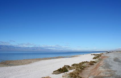 Photo Coastline in Salton Sea - Pictures and Images of Salton Sea