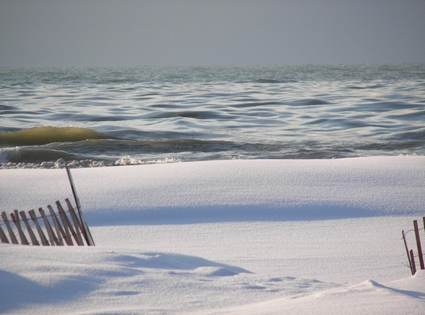 Photo Winter at the beach in Holland - Pictures and Images of Holland - 425x315  - Author: Editorial Staff, photo 3 of 5