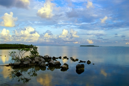 Photo Peaceful Morning  in Key Largo - Pictures and Images of Key Largo 