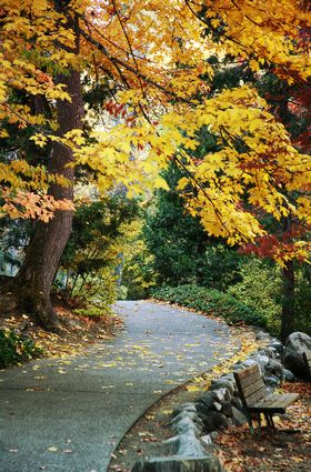 Photo Autumn in the park in Ashland - Pictures and Images of Ashland - 280x425  - Author: Editorial Staff, photo 3 of 3