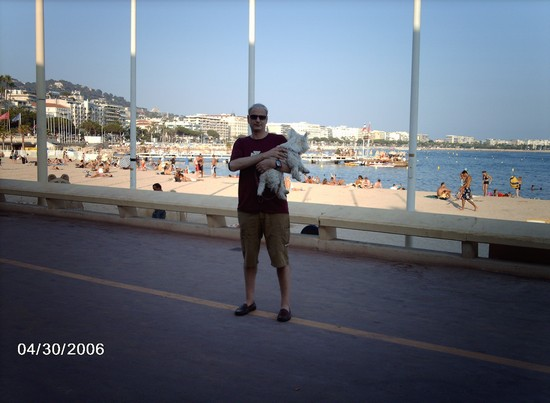Photo cannes passeggiata sulla croisette in Cannes - Pictures and Images of Cannes