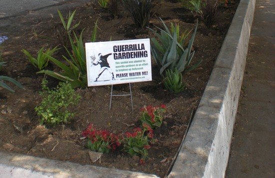 LOS ANGELES GUERRILLA GARDENING a LOS ANGELES