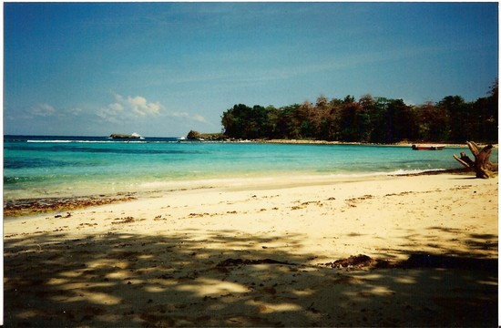 Photo port antonio port antonio in Port antonio - Pictures and Images of Port antonio 