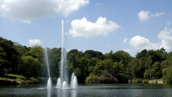 Photo Roundhay Park in Leeds - Pictures and Images of Leeds - 550x309  - Author: Editorial Staff, photo 1 of 7