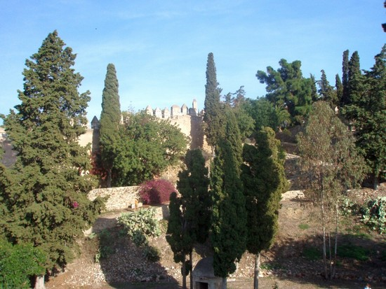 Photo bike tours malaga in m laga pictures and images of - Kenay home malaga ...