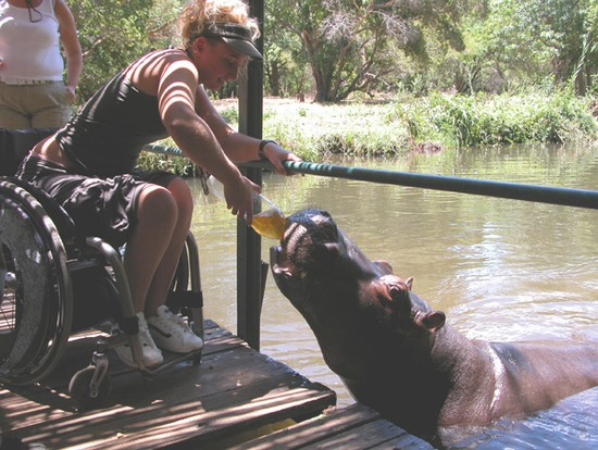 Photo johannesburg wheelchair traveller misha with jessica the hippo in Johannesburg - Pictures and Images of Johannesburg