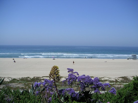 Photo manhattan beach white sand beach in Manhattan Beach - Pictures and Images of Manhattan Beach