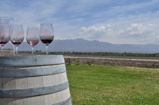 Photo mendoza wine tours in Mendoza - Pictures and Images of Mendoza