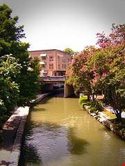 San Antonio1