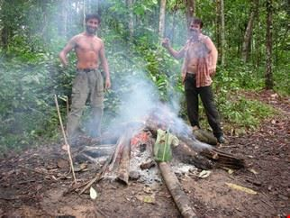 Survival in the Amazon forest