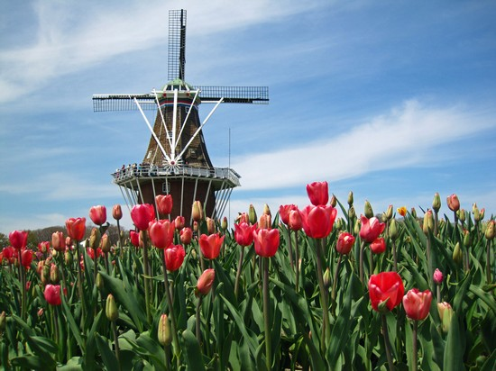 Windmill Island Holland Parks And Gardens