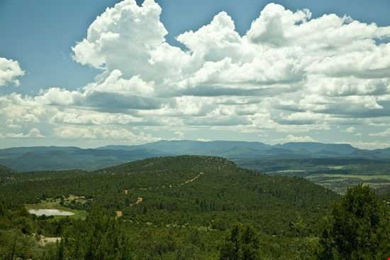 Apache - Sitgreaves National Forest