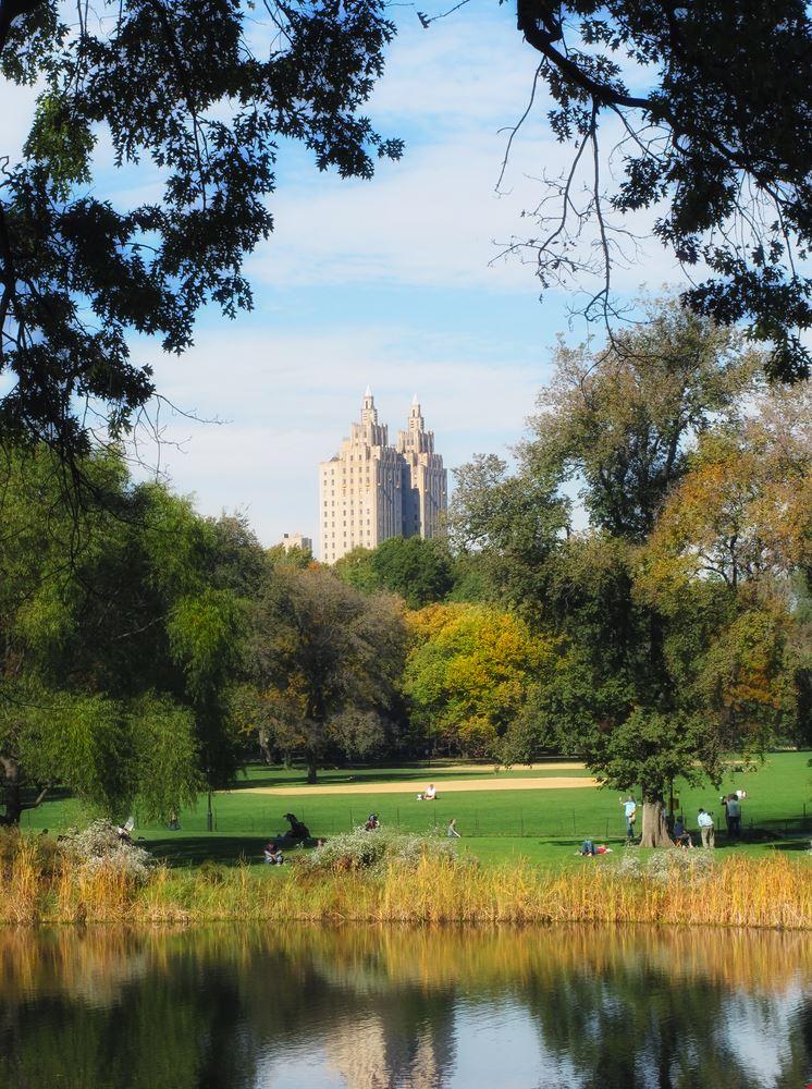 22719 new york central park