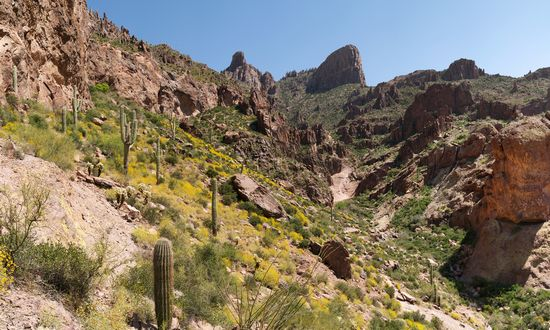 Photo Lost Dutchman State Park in Apache Junction - Pictures and Images of Apache Junction - 550x330  - Author: Editorial Staff, photo 1 of 6