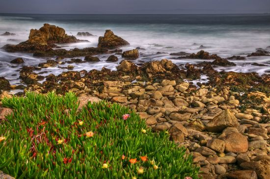 Photo 17 Mile Drive in Monterey - Pictures and Images of Monterey - 550x365  - Author: Editorial Staff, photo 1 of 16