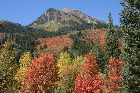 AMERICAN FORK CANYON a AMERICAN FORK