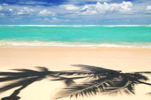 Photo punta cana punta cana beach in Punta Cana - Pictures and Images of Punta Cana - 500x332  - Author: Editorial Staff, photo 1 of 8