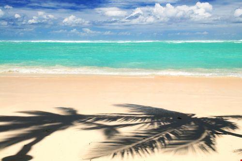 punta cana punta cana beach