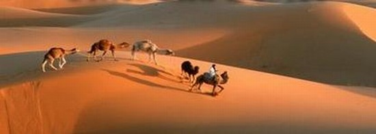 Photo sahara tours in Ouarzazate - Pictures and Images of Ouarzazate - 550x196  - Author: Editorial Staff, photo 1 of 38