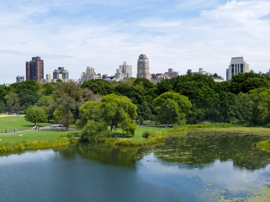 Photo new york central park und skyline new yorks in New York - Pictures and Images of New York