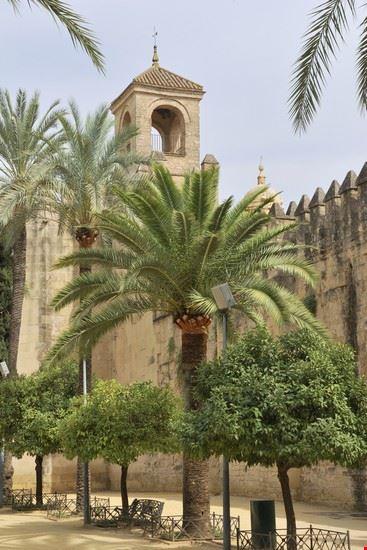 23712 cordoba alcazar de los reyes cristianos in cordoba andalusien