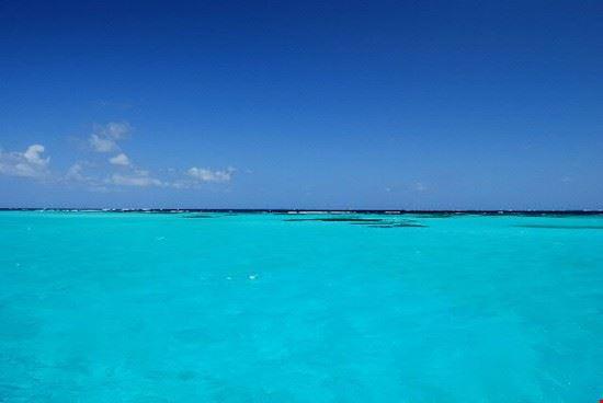 Grenadines, l'acqua di Tobago Cays
