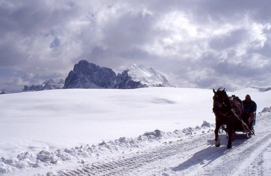 Foto Inverno all' Alpe di Siusi a Alpe di Siusi - 550x358  - Autore: Roberto, foto 5 di 32