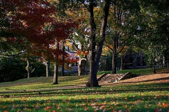 28921 boston tufts university garden