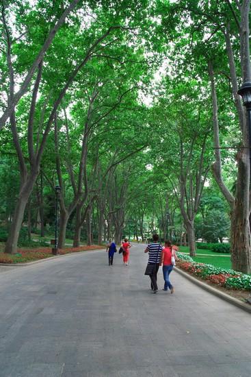 Foto istanbul guelhane park a Istanbul - 367x550 - Autore ...